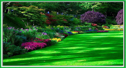 Great Crossroads Feed Barn Offers A Wide Variety Of Lawn And Garden Products. We  Carry Several Different Types Of Grass Seed, Fertilizer, Lawn Chemicals,  Straw, ...